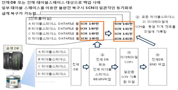 전체 데이터베이스 또는 전체 테이블 스페이스 BEGIN 수행