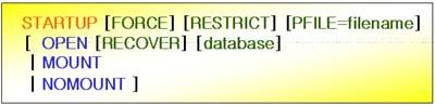 Oracle DB의 시작