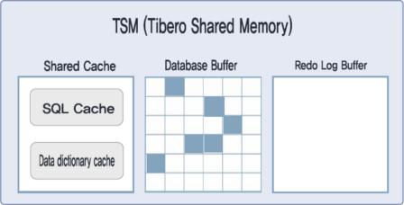 Tibero Shared Memory