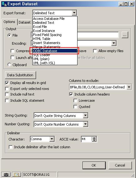 Export format으로 ODBC 설정