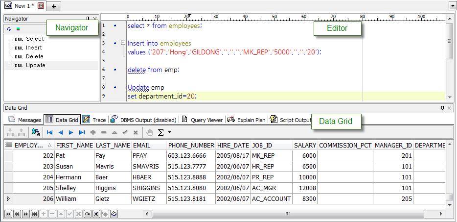 SQL Editor 화면