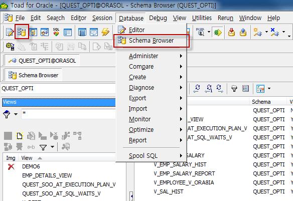 Schema Browser 실행 방법