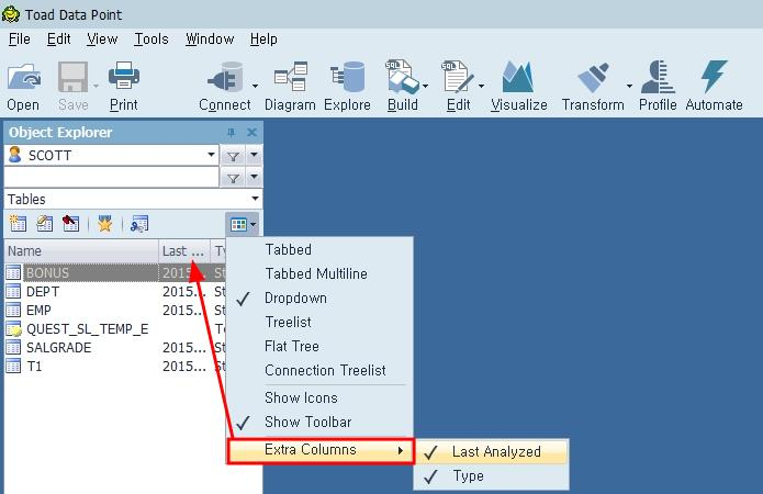 Toad Data Point 오브젝트에 대한 추가 정보 표시를 위해 항목 추가