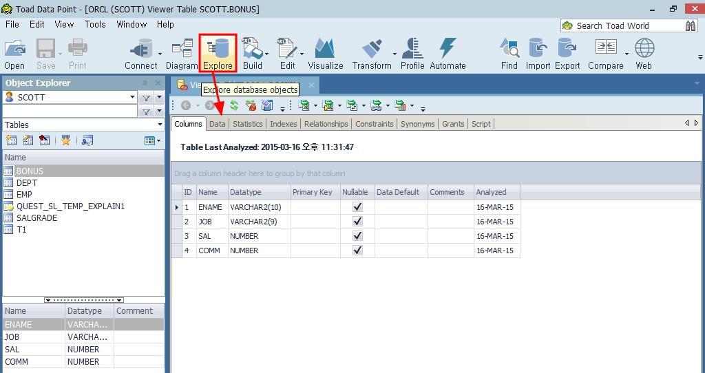 Toad Data Point 오브젝트 상세 정보 표시
