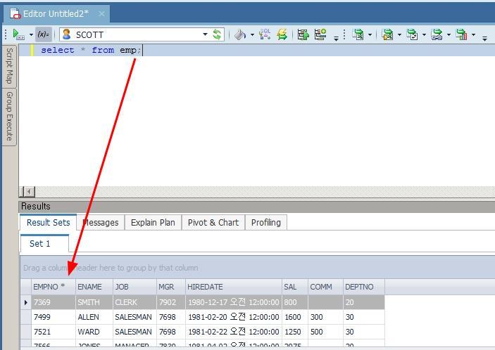 SQL 한 문장 실행